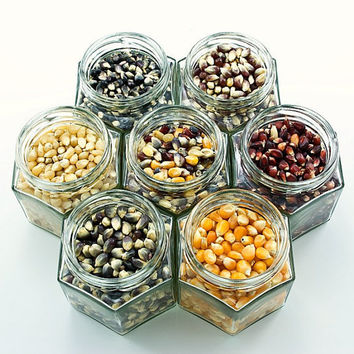 Gourmet popcorn kit - organic colored kernels for snack fans by dellcovespices