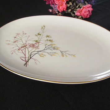 Embassy Vitrified China Oval Platter Made in USA Branches Pattern