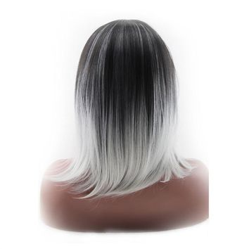 Natural Looking Dark Roots  Two Toned Shoulder Length Synthetic Wig