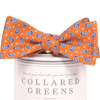Alta Bow Tie Orange