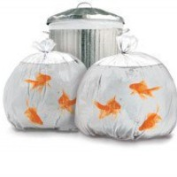 Funky Honey - Funky Gifts and Home Accessories - Goldfish Bin Bags