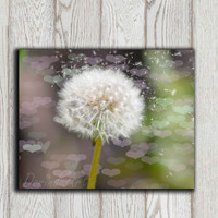 Dandelion photo print Pink green white brown purple Home wall decor Flower Bedroom poster art printable Office decor 10x8 INSTANT DOWNLOAD