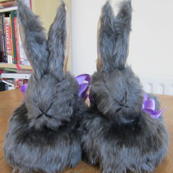 Ladies Novelty Slippers-Grey Rabbit Heads-Silver Fox Plush-UK Size 5-Christmas-Easter-Birthday-All Year Round-Ideal Gift-Cosy Warm Footwear-
