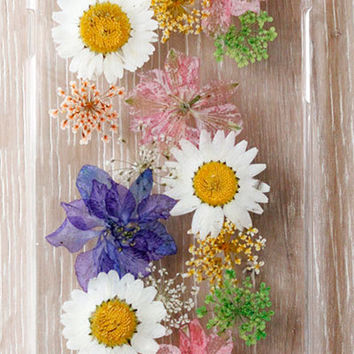 Handmade Real  natural dry colorful flower iphone 4 4s 5 5s 5c 6 6 plus  case cover samsung galaxy s5 note 2 note 3 case colorful