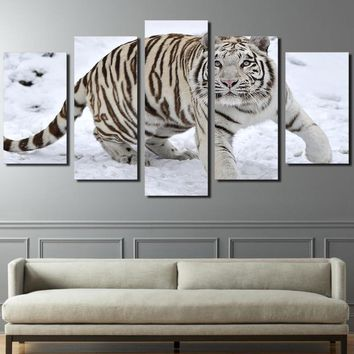 "White Tiger Snow 5 Panels Pcs Pieces wall art canvas picture print - 40"" wide"