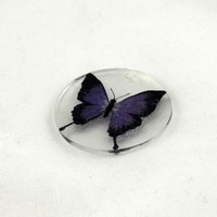 Purple Butterfly Shrinky Dinks Shrink Plastic by theotherstacey
