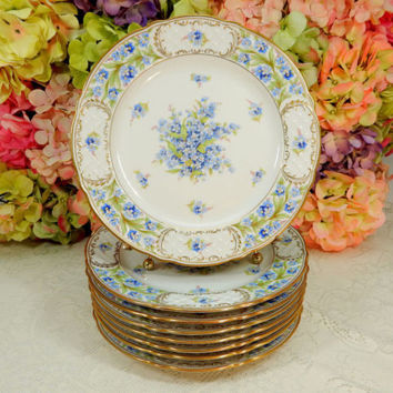 8 Gorgeous Schumann Bavaria Porcelain Dinner Plates ~ Forget Me Not ~ Gold Gilt