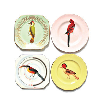 Beautiful Birds plate set