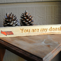 You are my density - Back to the Future - Carved Wood Sign, Reclaimed Wood
