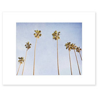 8x10 Matted Print, Venice Beach Palm Tree Wall Art, California Coastal Wall Decor Picture, 'Venice Palms'