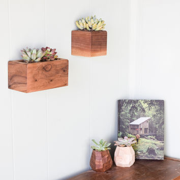 Succulent Box Planters, Set of Two, Walnut