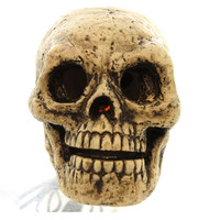 Halloween SKULL LIGHT Ceramic Skeleton Electric 19725