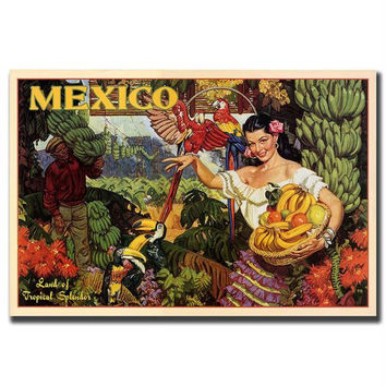 Mexico-Gallery Wrapped 24x32 Canvas Art