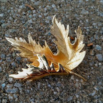 Vintage Brushed Goldtone Leaf Brooch Pin, High End - Stunning / Autumn / Classy / Mother's Day / Gift