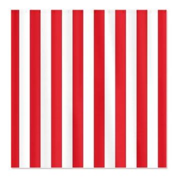 White And Red Striped Shower Curtain