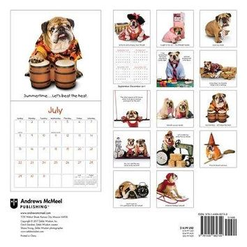 Zelda Wall Calendar, Funny Dogs by Andrews McMeel Publishing