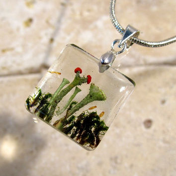 Lichens (Cladonia sp.) and Moss (Dicranoweisia cirrata)  Necklace, Moss Jewelry, Plant Jewelry, mycology, fungi, woodland, nature