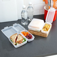 Set of 2 Divided Lunch Containers