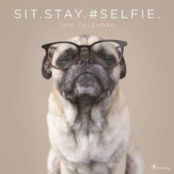 Sit. Stay. Selfie Wall Calendar, Funny Dogs by TF Publishing