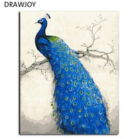 Peacock Frameless Pictures Painting By Numbers DIY Digital Canvas Oil Painting Europe Home Decoration Wall Art G456