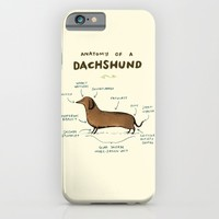 Anatomy of a Dachshund iPhone & iPod Case by Sophie Corrigan