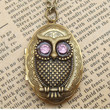 Steampunk Owl 0510a Locket Necklace Vintage Style by sallydesign