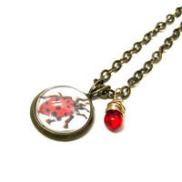 Ladybug Illustration Vintage Encyclopedia Czech Red Glass Drop Mini Necklace Brass Pendant