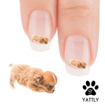 Chihuahua I am hungry, Mama! Nail Art Decals (NOW 50% MORE FREE)