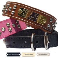 Studded Leather Dog Collars with Nameplate - Tapered