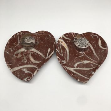 """2pcs,6.25""""x5.2"""" Ammonite Fossils Heart Plates Dishes Red Marble @Morocco,MF1358"""