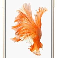 Apple iPhone 6S - 16GB GSM Unlocked - Gold (Certified Refurbished)
