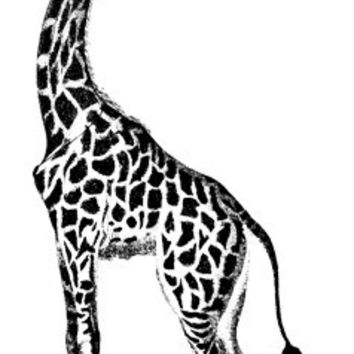 giraffe animal png clip art Digital graphics Image Download jungle safari images