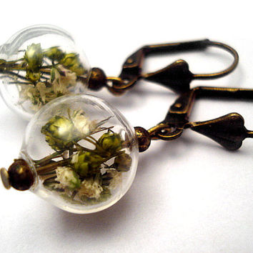 REAL BUDS bronze earrings - delicate blown glass orb with real buds, art nouveau style.