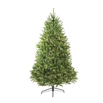 10' Pre-Lit Northern Pine Full Artificial Christmas Tree - Clear Lights