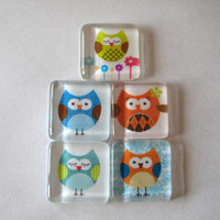 Silly Owl Square Glass Magnets Set of 5