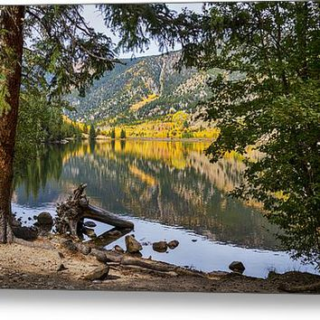 Autumn Cottonwood Lake Reflections Dreaming Acrylic Print