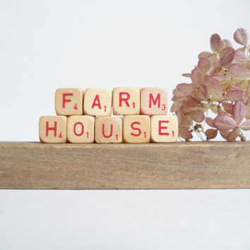Vintage Letter Cubes FARMHOUSE Home Decor Wooden Red Supplies Crafts Gift Idea