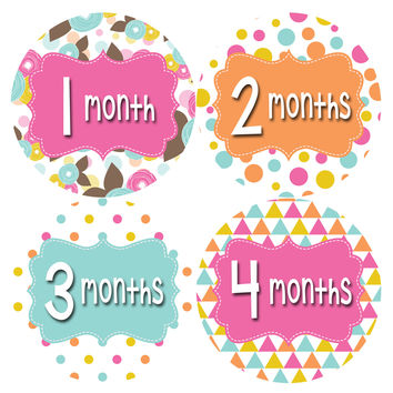 Baby Girl Monthly Baby Stickers Style #410