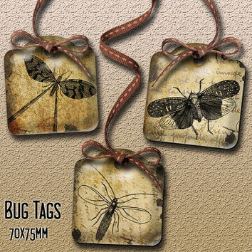 Grungy Bug Tags for Journaling, Scrapbooking, Gift Tags, Holders INSTANT DOWNLOAD 2 Printable Digital Collage Sheets