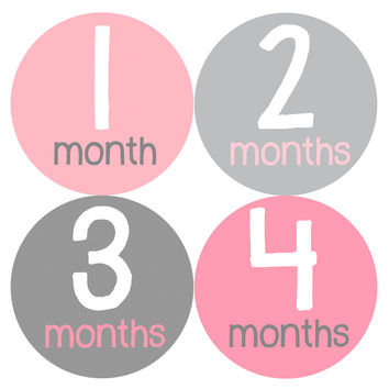 Baby Girl Monthly Baby Stickers Style #159