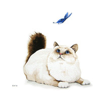 Cat and Butterfly - Signed Fine Art Print - brown and white cat with blue butterfly minimalist home decor