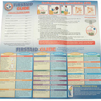 100 First Aid Guides
