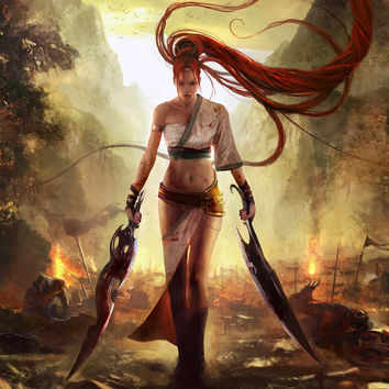 Heavenly Sword Nariko Video Game Poster