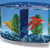 BETTA BOW FRONT DBL TANK - Earl May