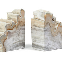 Pair of Petrified-Wood Bookends, Bookends
