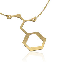 Methamphetamine necklace - 14K gold , chemistry jewelry, chemistry necklace, molecule necklace