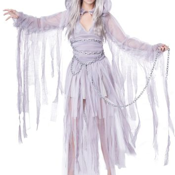 Haunting Beauty Tattered Dress Costume (X-Large,Grey)