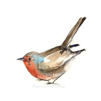 Robin giclee print watercolor painting art animal bird A5 aquarelle reproduction woodland