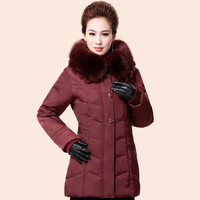 Winter Jacket Women 2015 Winter Coat Women Plus Size 6XL Long Parka Fur Collar Grey Duck Downs Coats Women Jackets LJ3391