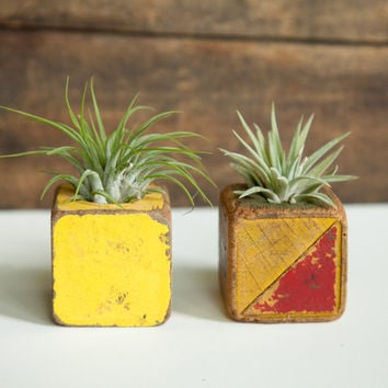 Set of 2 Vintage toy block air plant holders. Distressed, aged patina on wooden block planter. Great Hostess gift!